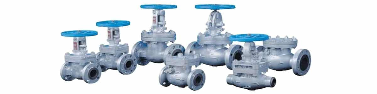 Industrial Globe And Check Valve